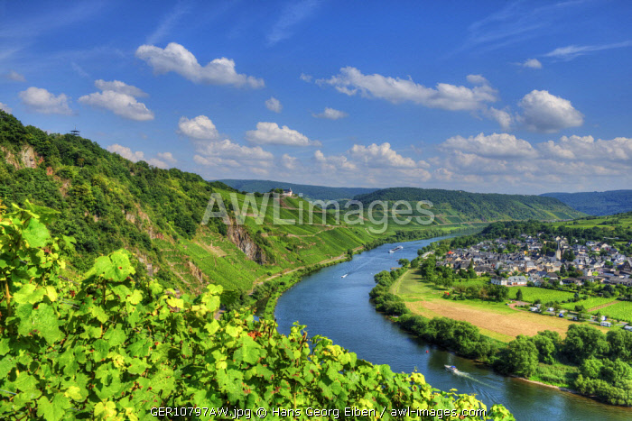 River Mosel with Pv�nderich and former cloister Marienburg, Rhineland-Palatinate, Germany