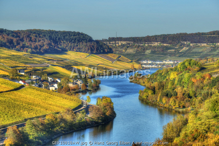 River Mosel with Nittel at fall, Rhineland-Palatinate, Germany