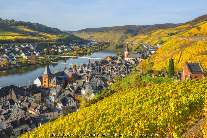 River Mosel with Zell at fall, Rhineland-Palatinate, Germany
