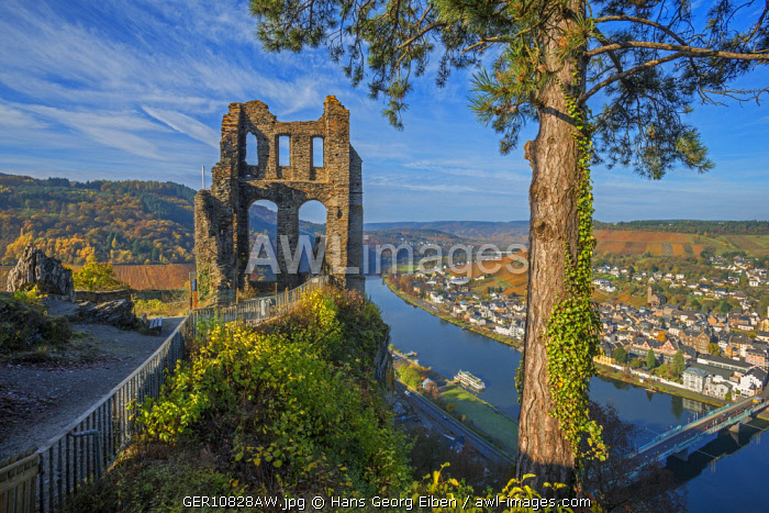 Ruin of Grevenburg with River Mosel, Traben-Trarbach, Rhineland-Palatinate, Germany