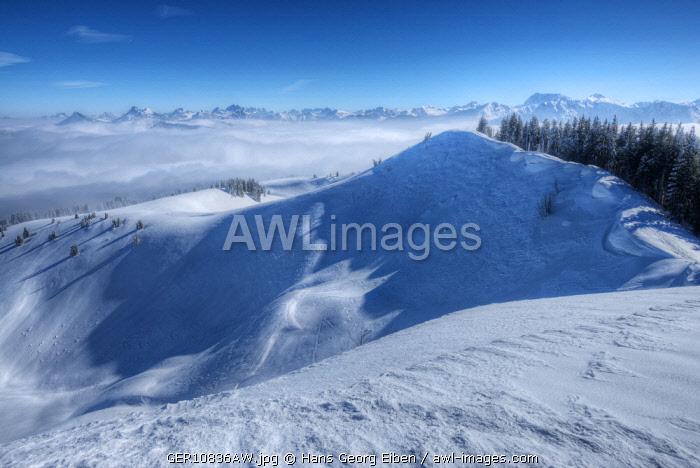 Summit of Wertacher Hörnle, Tannheim valley, Allgäu, Bavaria, Germany