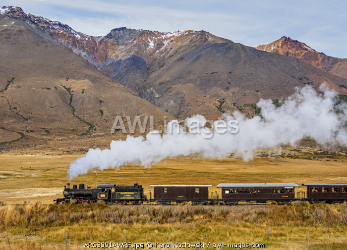 Old Patagonian Express La Trochita, steam train, Chubut Province, Patagonia, Argentina