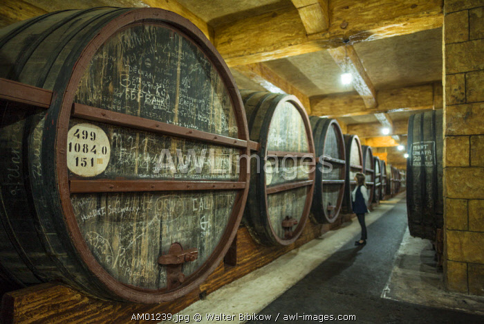 Armenia, Yerevan, Yerevan Noy Brandy Company, Brandy distillers since the 19th century, casks of brandy and MR