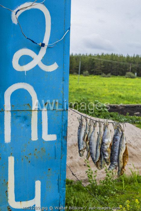 Armenia, Lake Sevan, Sevan, fish shacks selling smoked fish