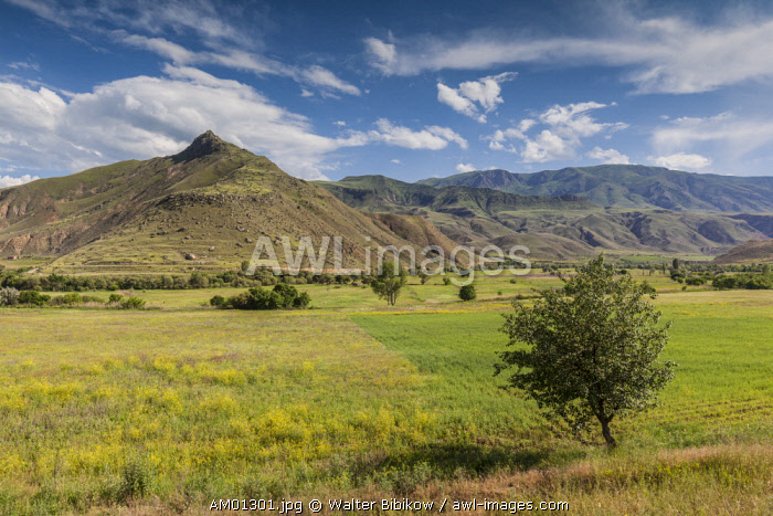 Armenia, Yeghegnadzor, landscape with fields and mountains