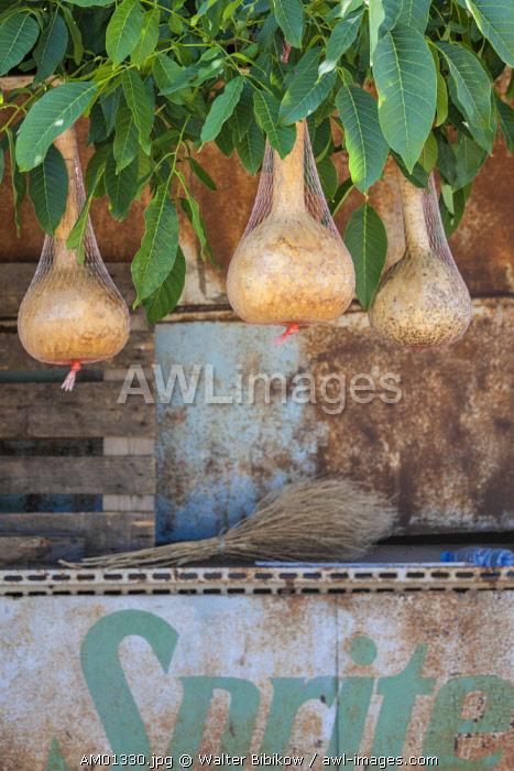 Armenia, Areni,  wine gourds