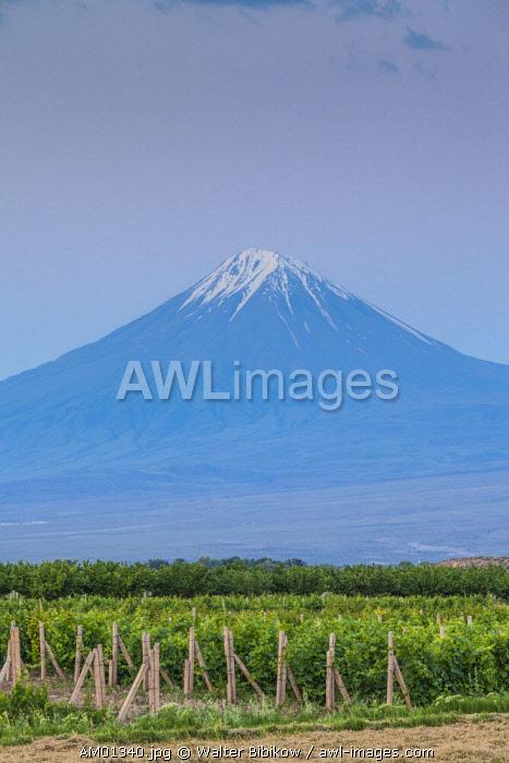 Armenia, Khor Virap, view of Little Mt. Ararat