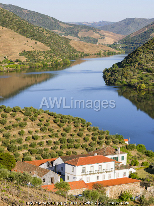 Valley of river Douro near village Coleja. It is the wine growing area Alto Douro and listed as UNESCO World Heritage Site. Portugal
