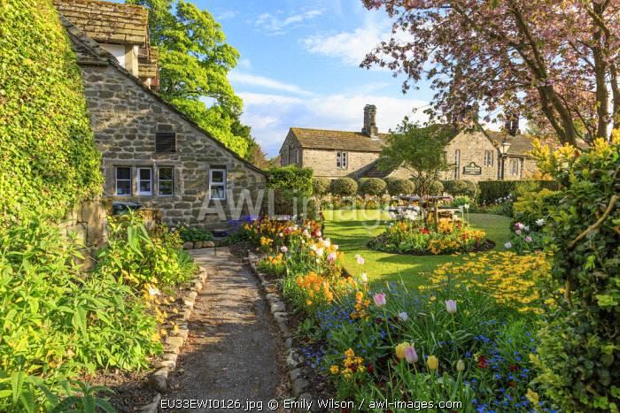 England, North Yorkshire, Wharfedale, Bolton Abbey, near River Wharfe. Villages Tea Houses and gardens.