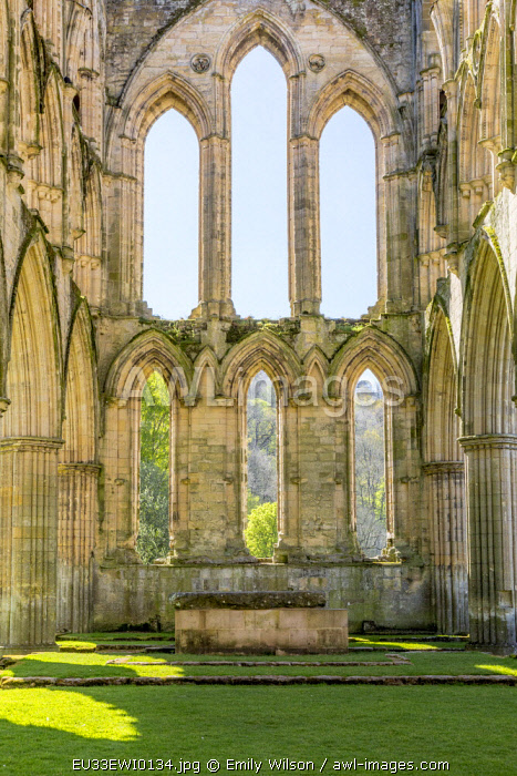 England, North Yorkshire, Rievaulx. 13th c. Cistercian ruins of Rievaulx Abbey. English Heritage and National Trust Site. Near River Rye.