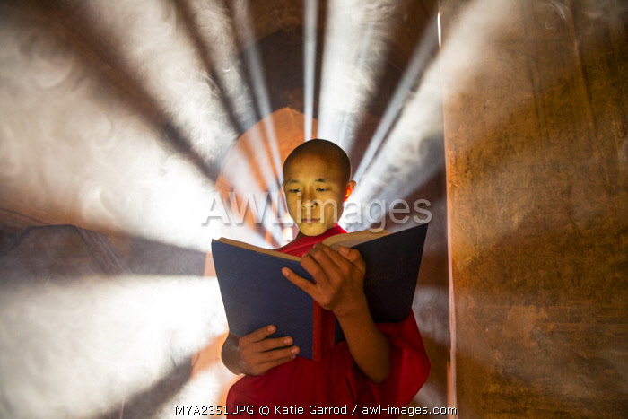 Myanmar, Bagan. A young monk reading a book in a temple.