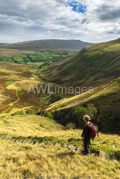 awl-images.com - England / England, Yorkshire Dales National Park, Walking in the Howgill Hills (MR)