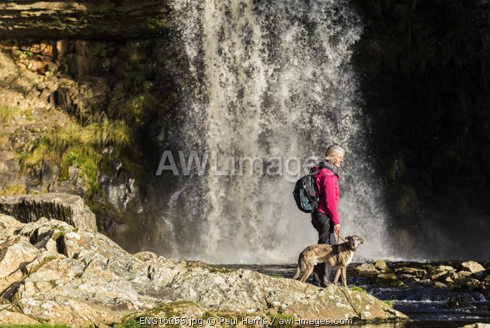 awl-images.com - England / Woman and her dog, Thornton Force, Ingleton Waterfall Trail