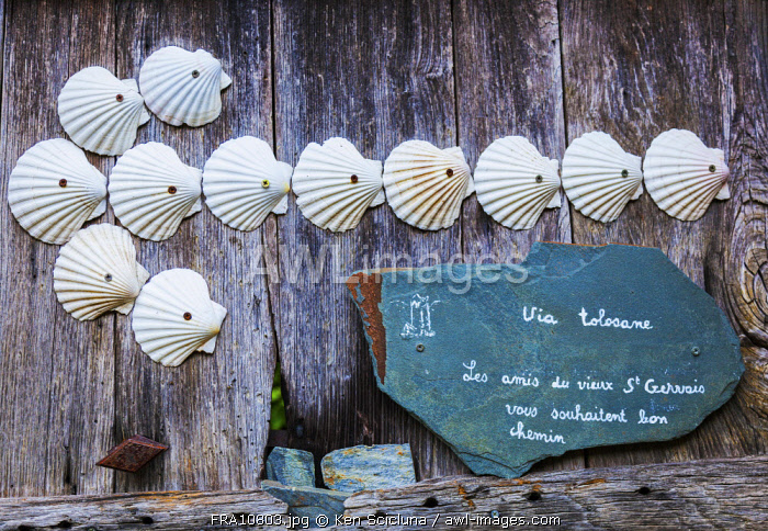 France, Occitanie, Saint Gervais sur Mare. Arrow with shells which are the sign of pilgrims of Santiago showing the way on the Via Tolosana towards Santiago de Compostela.