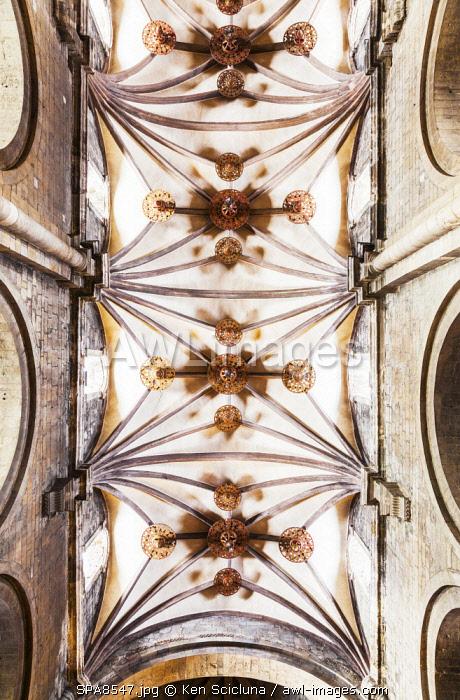 Spain. Aragona. Jaca. Interior of Cathedral of Jaca ceiling.