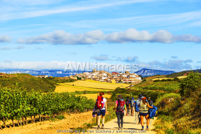 Spain, Navarre, Cirauqui. Pilgrims walking towards the pictoresque environs on the Camino Frances just after Puenta La Reina where the several routes meet to continue towards Santaigo de Compostela towards the village of Cirauqui.