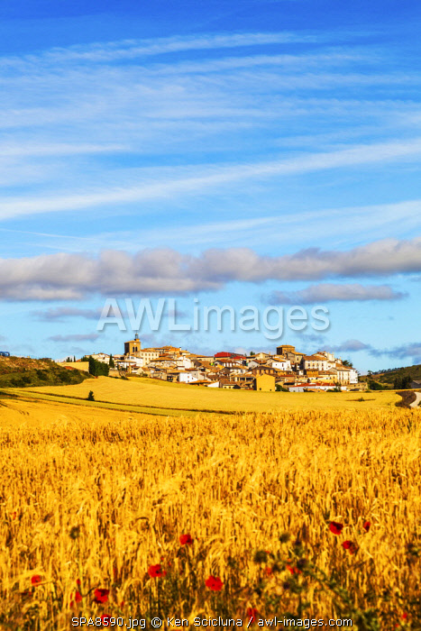 Spain, Navarre, Cirauqui. Pictoresque environs on the Camino Frances just after Puenta La Reina where the several routes meet to continue towards Santaigo de Compostela towards the village of Cirauqui