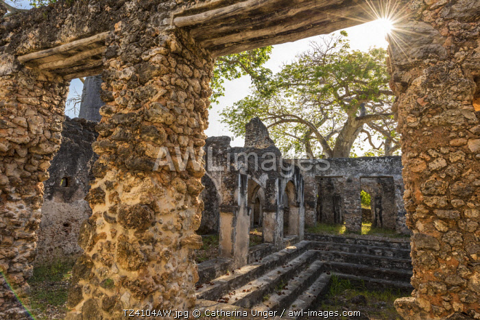 awl-images.com - Tanzania / Africa, Tanzania, Lindi region. The ruins of Songo Mnara.