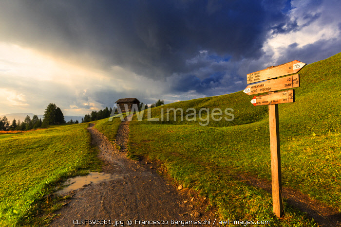 Sunlight illuminates a signal on a path, after rain. La Valle/La Val/Wengen Badia Valley, South Tyrol, Dolomites, Italy, Europe.