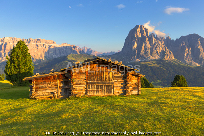 Last rays of sun on traditional hut with view on Sassolungo and Sella Group. Gardena Valley, South Tyrol, Dolomites, Italy, Europe.