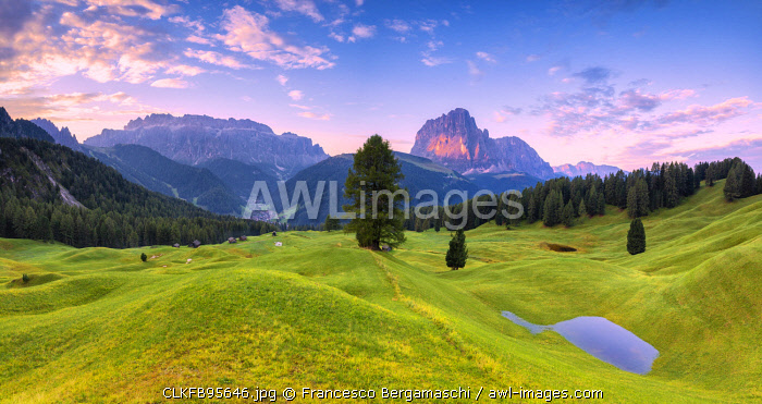 Panoramic view of Daunei pasture after the rain. Daunei, Selva Val Gardena, Gardena Valley, South Tyrol, Dolomites, Italy, Europe.