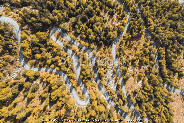Aerial view of a winding road in autumn. Val Masino, Sondrio province, Lombardy, Italy.