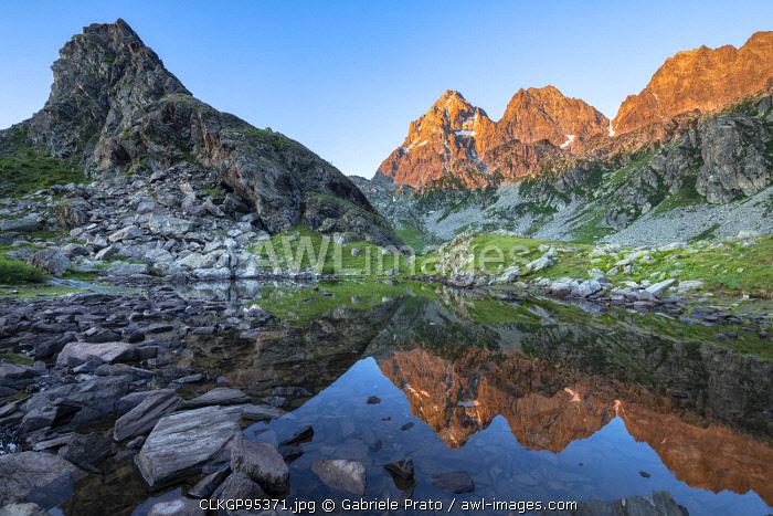The Monviso Peak reflected in a small alpine lake at sunrise (Fiorenza Lake, Pian del Re, Monviso Natural Park, Po Valley, Crissolo, Cuneo province, Piedmont, Italy, Europe)