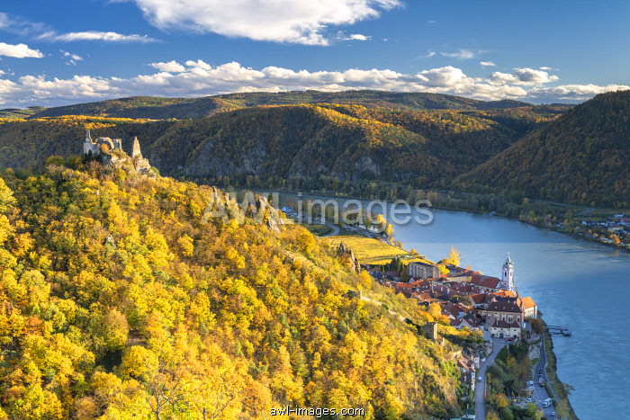 Duernstein, Wachau, Waldviertel, district of Krems, Lower Austria, Austria, Europe. Duernstein with the collegiate church, the castle ruins and the Danube river, view from the Vogelberg Hill