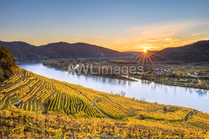 Weissenkirchen in der Wachau, Wachau, Waldviertel, district of Krems, Lower Austria, Austria, Europe. Sunrise in the vineyards near Weissenkirchen in der Wachau, view to the Danube river and the villages  of Rossatz and Dürnstein