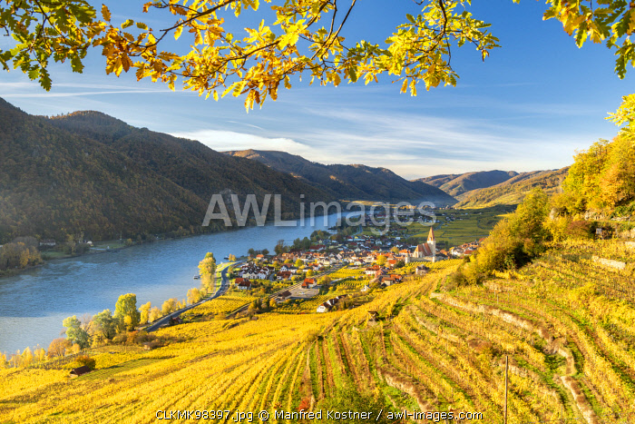 Weissenkirchen in der Wachau, Wachau, Waldviertel, district of Krems, Lower Austria, Austria, Europe. View from the vineyards to the village of Weissenkirchen in der Wachau