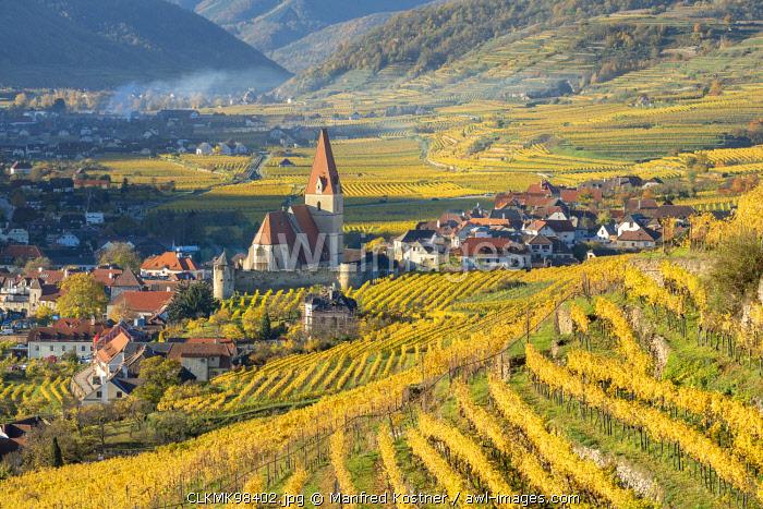 Weissenkirchen in der Wachau, Wachau, Waldviertel, district of Krems, Lower Austria, Austria, Europe. View from the vineyards to the village of Weissenkirchen in der Wachau