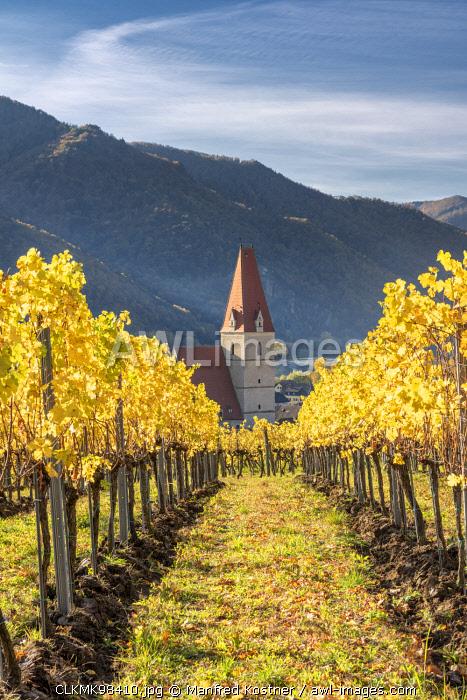 Weissenkirchen in der Wachau, Wachau, Waldviertel, district of Krems, Lower Austria, Austria, Europe.