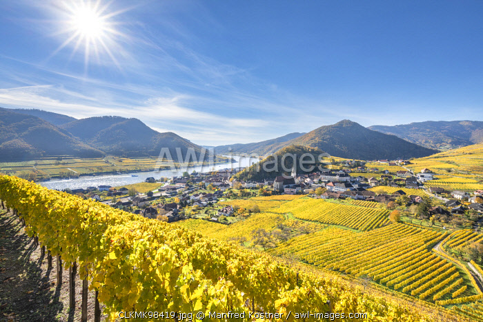 Spitz an der Donau, Wachau, Waldviertel, district of Krems, Lower Austria, Austria, Europe. View from the vineyards to the village of Weissenkirchen in der Wachau