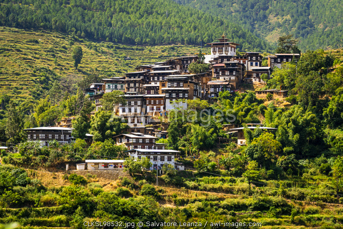 Typical bhutanese houses with temple on top. Timphu district, Bhutan