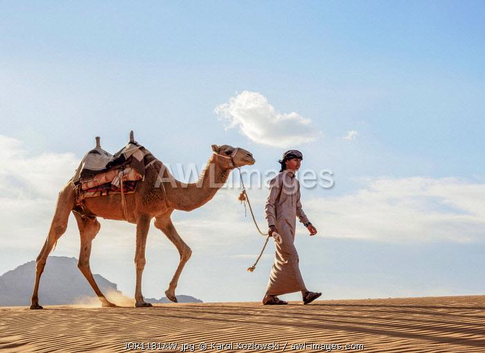 Bedouin walking with his camel, Wadi Rum, Aqaba Governorate, Jordan (MR)
