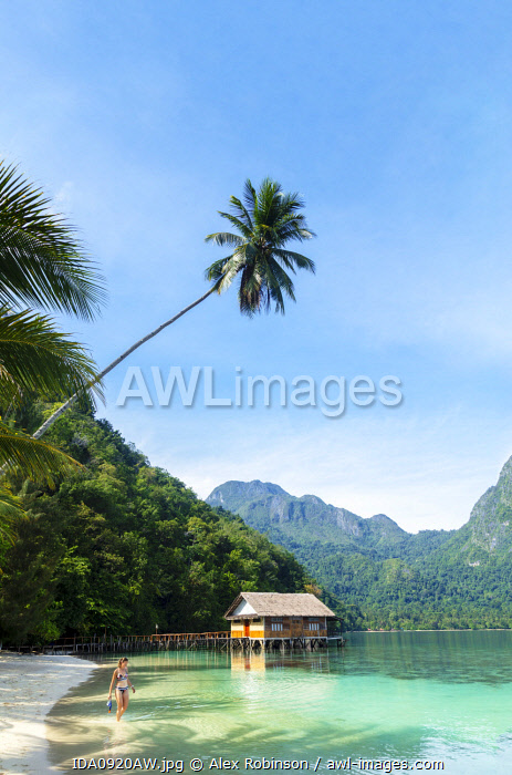 awl-images.com - Indonesia / Asia, Southeast Asia, Indonesia, Spice Islands, Maluku, Seram island, Ora beach resort