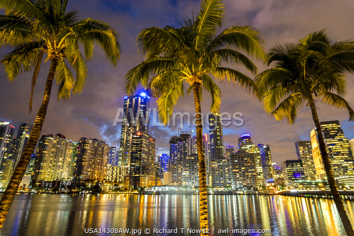 USA, Florida, Miami downtown business district with palm trees of the Mandarin Oriental Hotel.