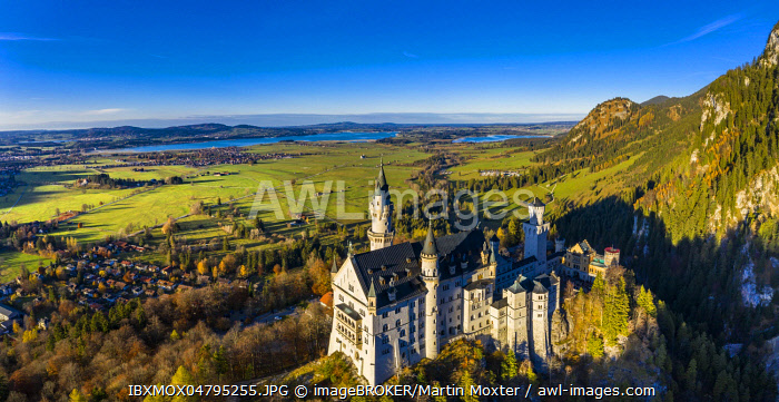 Drone shot, Neuschwanstein Castle in autumn, Forggensee, Schwangau, Ostallgau, Allgau, Swabia, Oberbayern, Germany, behind, Europe