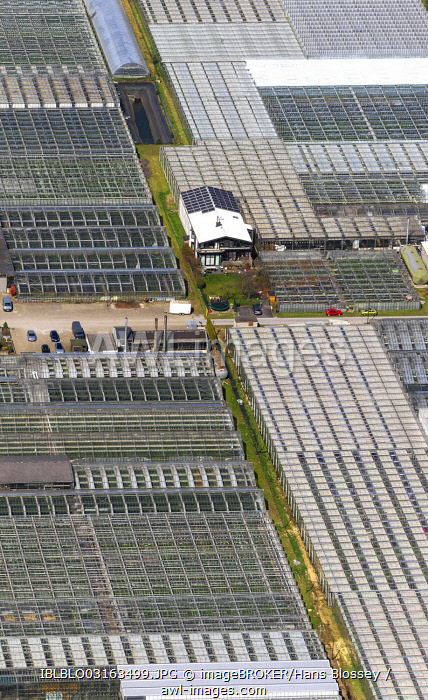 Greenhouses of Aldenhoff GbR, aerial view, Schermbeck, North Rhine-Westphalia, Germany, Europe