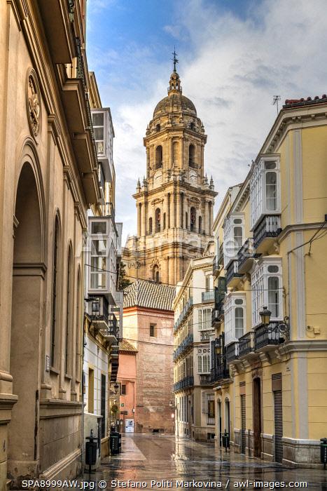 Cathedral, Malaga, Andalusia, Spain