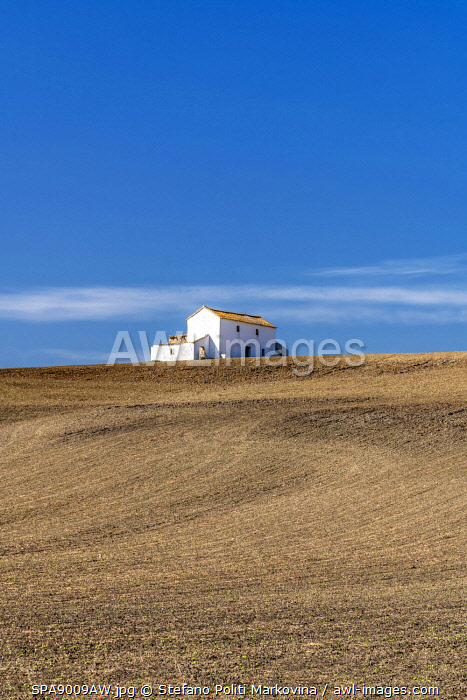 Rolling hills landscape, Andalusia, Spain