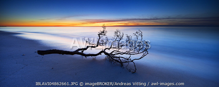 Fischland-Darss-Zingst, Baltic Sea, Western Pomerania Lagoon Area National Park, Mecklenburg-Western Pomerania, Germany