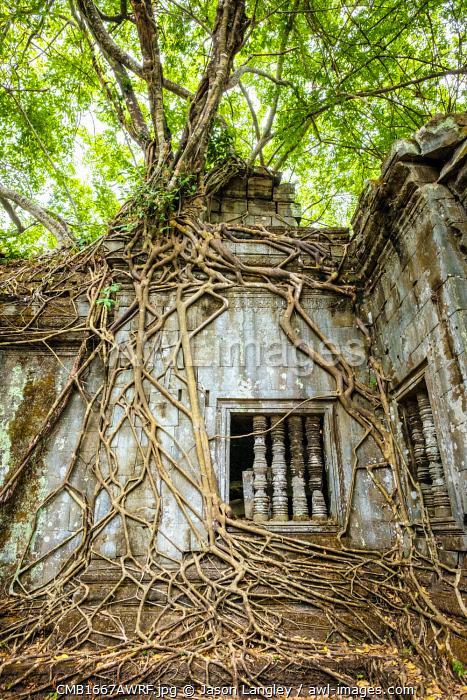 Prasat Beng Mealea temple ruins, Siem Reap Province, Cambodia