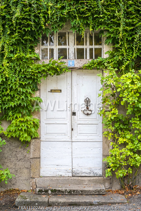 Front door of French house covered in vines (Parthenocissus tricuspidata), Argentat, Corrèze department, Limousin, France.