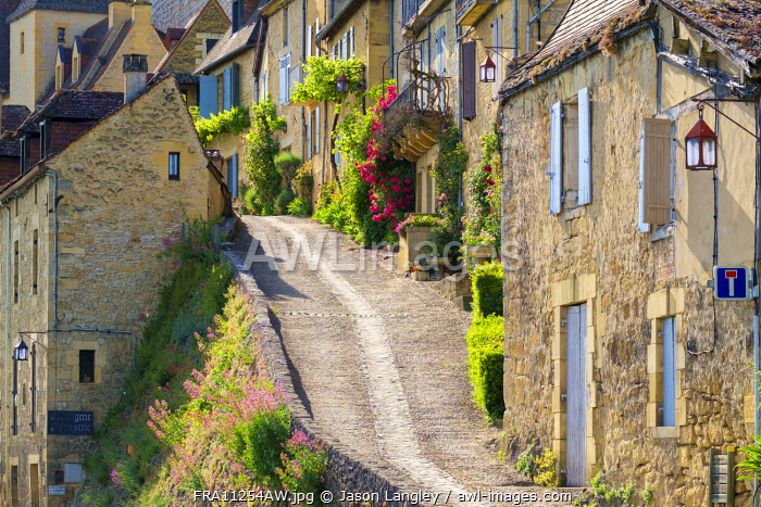 Steep street lined with old houses, Beynac-et-Cazenac, Dordogne Department, Aquitaine, France