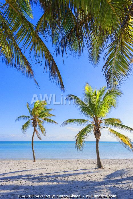 Tropical beach, Key West, Florida, USA