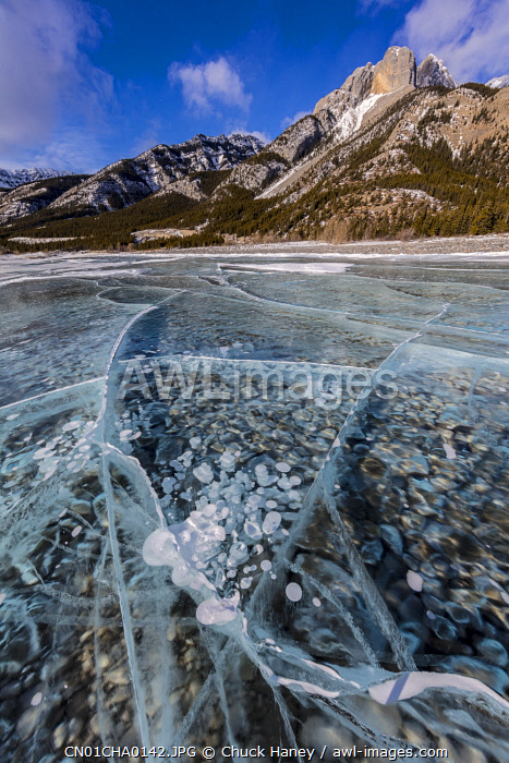 Mount Abraham at sunrise with methane ice bubbles under clear ice on Abraham Lake near Nordegg, Alberta, Canada