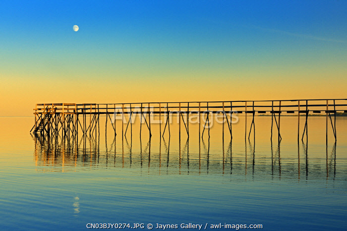 awl-images.com - Canada / Canada, Manitoba, Winnipeg. Pier on Lake Winnipeg with rising moon