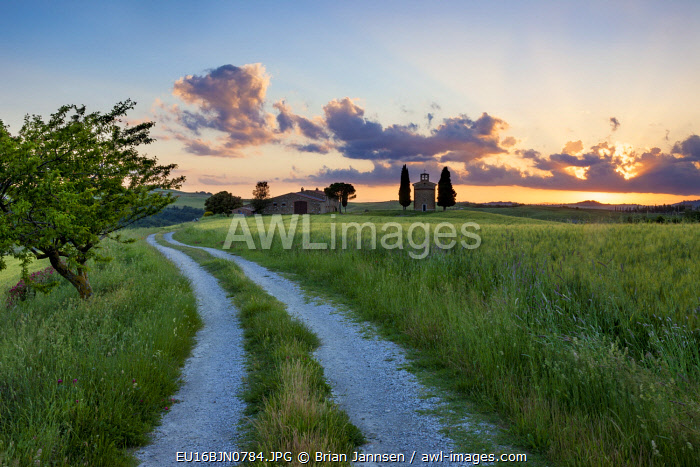 Country lane leading to Cappella di Vitaleta and the Tuscan countryside at sunset near San Quirico d'Orcia, Tuscany, Italy