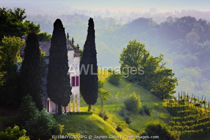 Italy, Veneto, Asolo. Country house and cypress tree